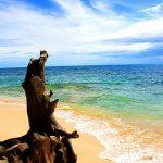 potipot-philippine-island-zambales